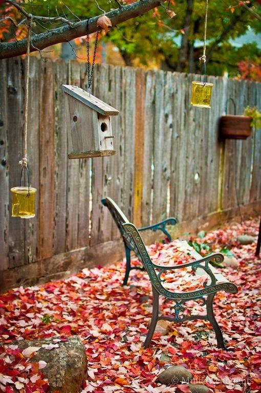 Autumn leaves-1-2