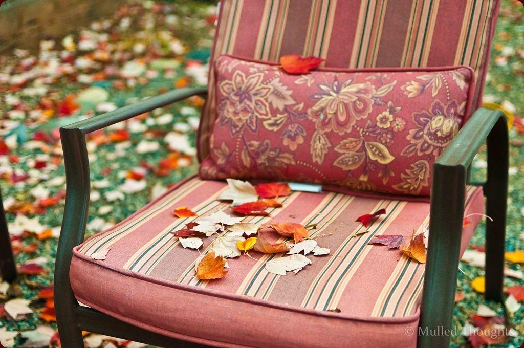 Autumn leaves-1-3