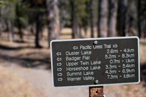 PCT Marker